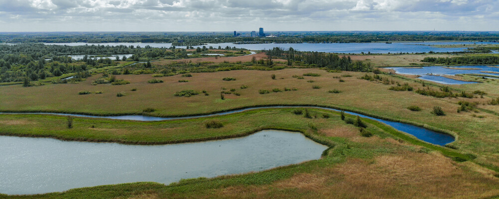 Groen landschap tegen Almere Stad